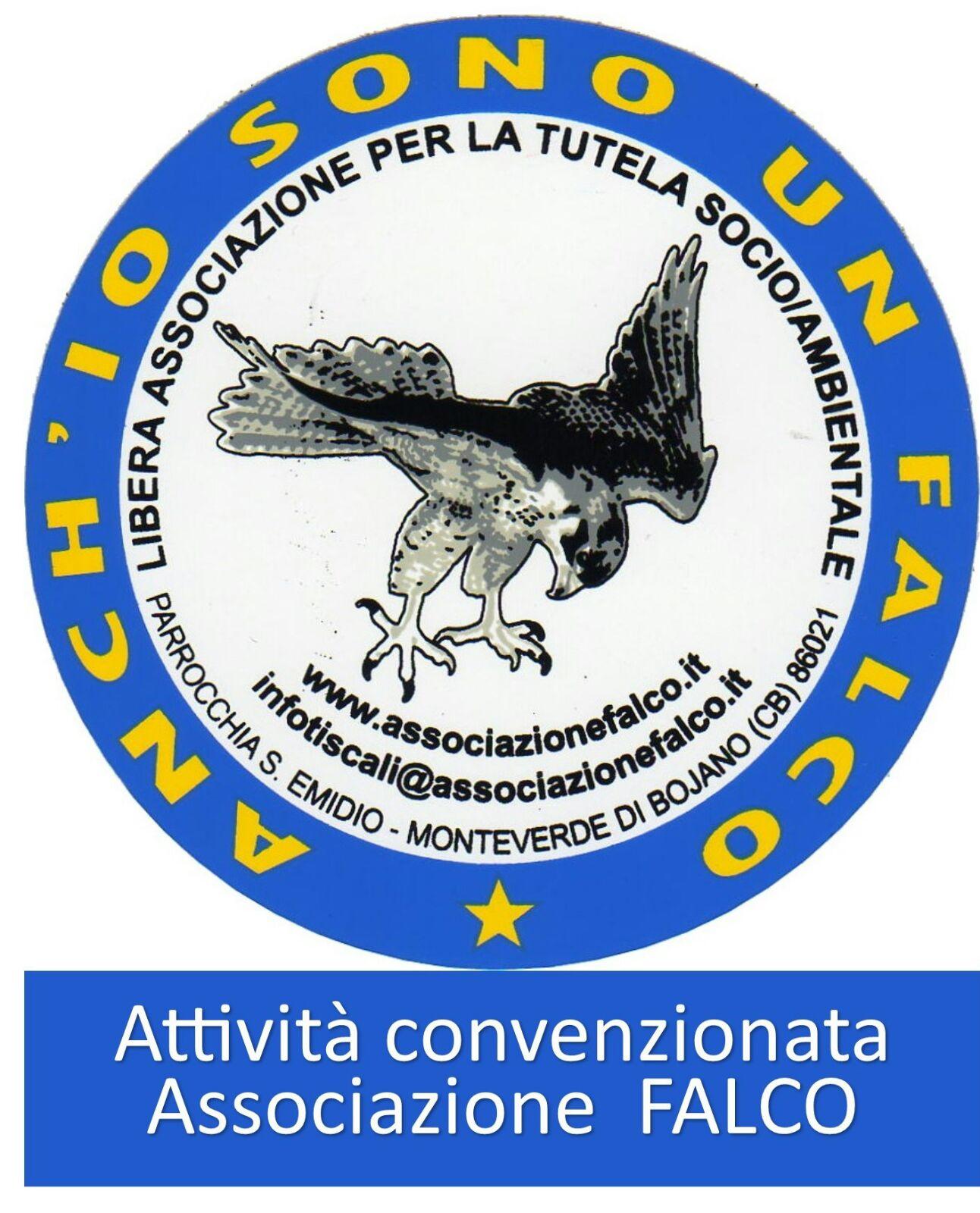 Caro socio sono Marro Giovanni attualmente presidente dell Associazione Falco alla quale sei iscritto Scrivo per unicarti che abbiamo provveduto a